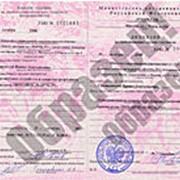 Юридическая консультация на получение лицензии на травматическое оружие (для участников клуба) фото