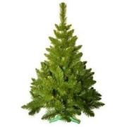 Ёлка новогодняя, зелёная, искусственная, высота 75см фото