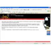 веб-дизайн. фото