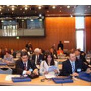 Организация бизнес-форумов. фото