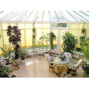 Проектирование зимних садов фото