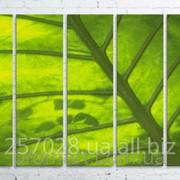 Модульна картина на полотні Зелений лист код КМ100150(150)-247-ANT фото