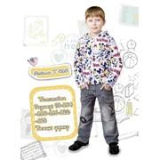 Толстовка для мальчика Active wear Модель Т010 фото