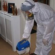 Услуги окуривания зданий для уничтожения насекомых-паразитов фото