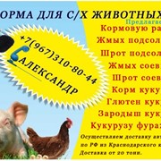 Корма для с.х. животных и птиц фото