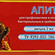 Апитон - препарат для профилактики нозематоза, бактериальных и грибковых заболеваний медоносных пчел, 2 мл фото