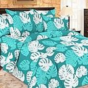 Комплект постельного белья ПМ: ТехRepublic КПБ Amore Mio BZ Leaves фото