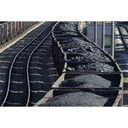 Бурый уголь 3БКПО фото