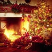 Новогодние праздники фото