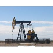 Нефть разведка. фото
