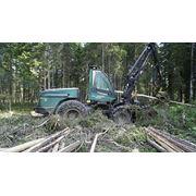 Лесной комплекс Timberjack 1270B и Ponsse BUFFALO (б/у) сост. отличное фото