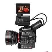Canon EOS C300 DAF (Cinema) фото
