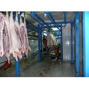 Монтаж оборудования для убоя и мясопереработки фото