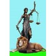 Адвокатские услуги по имущественным спорам фото