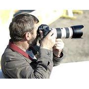 Услуги профессионального фотографа. фото