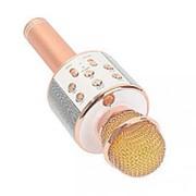 Микрофон с динамиком c-335 фото