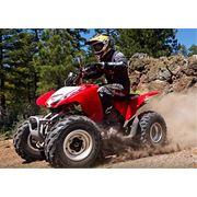 Квадроцикл TRX250X фото