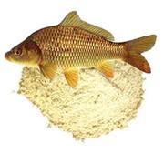 Рыбная мука содержание протеина 60% фото