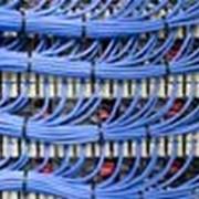 Структурированные кабельные сети (СКС) фото