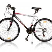 Велосипед Gravity IROQUES фото