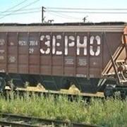 Перевозка зерна в Украине фото