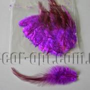 Перья фиолетовые 5-14см 50шт 570429 фото