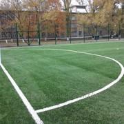 Строительство мини футбольных полей под ключ фото