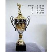 Кубок гольфист фото