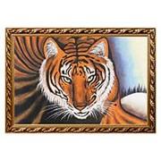 """Картина """"Тигр"""" багет 46х66 см фото"""