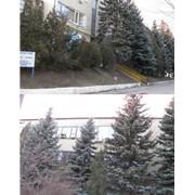Здания и помещения офисные в аренду фото