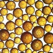 Катионит КУ-2=8 фото
