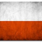 Польская шенген виза фото