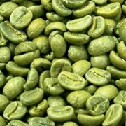 Кофе зеленый Arabica Costa Rica SHB San Vito 69 kg фото