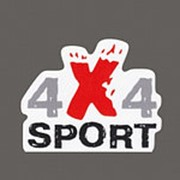 4x4sport Наклейка 4x4sport маленькая для ATV и др. размер 90х70мм, вырезанная фото