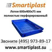 600х400х75 мм Лотки пластиковые под кондитерские и хлебобулочные изделия фото