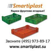 Ящики для ягод фруктовые фото