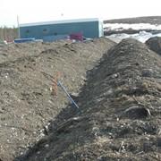 Рекультивация нарушенных земель от нефти фото