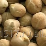Chickpeas (Kabuli) in bulk and packaged in bags of 25/50 kg, sortex quality, shipped in 20 ft containers of 25 tons net. фото
