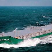 Сухогруз-контейнеровоз многоцелевой 5700 ДВТ фото