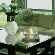 Биокамин Wild Flame Белиз фото