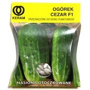 Семена огурцов гранулированные PNOS фото