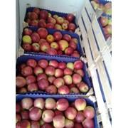 Бумага для яблок Кишинев фото