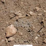 Диагностика грунта фото