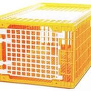 Ящик для транспортировки гуся и индейки с боковой и верхней загрузкой фото
