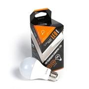 12W (95W) iPower Premium лампа LED, Грушевидная (А60), E27, 2700K (Жёлтый теплый) (IPPB12W2700KE27) фото