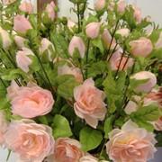 РОЗА С БУТОНАМИ розовая. выс. 70 см. фото