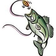Корпоративный отдых у костра. Рыбалка на щука, карась, зеркальный карп, окунь или толстолобик. Активной отдых на природе. фото