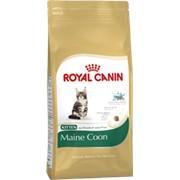 Maine Coon Kitten Royal Canin корм для котят, от 3 до 15 месяцев, Мейн-кун, Пакет, 4,0кг фото