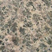 Гранит Leopard фото