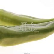 Перец длинный фото